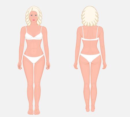 下着で完全に成長して立っているヨーロッパの女性裸の体。フロント  とバックビュー。広告のためのベクターイラスト, 医療 (ヘルスケア),