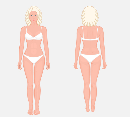 European woman naked body standing in full growth in underwear. Front  and back view. Vector illustration for advertising, medical (health care), bodybuilding, sport publications.