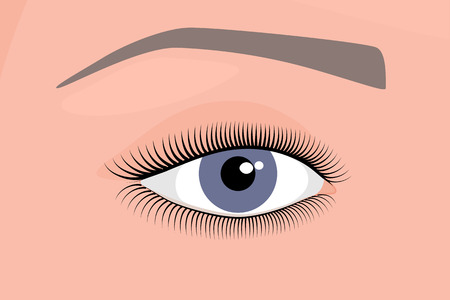 Vector illustration. Anatomy of a human eye. Close-up and macro view. For advertising and medical publications. EPS 10.