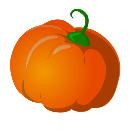 Pumpkin Isolated on White. Flat Design Style. Vector illustration