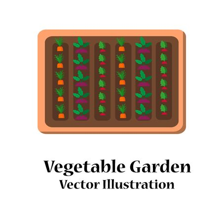 Vegetable garden planner flat design. Vector illustration Stock Photo