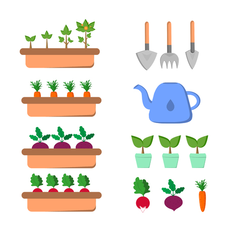 Set of gardening items with vegetables and tools Stock Photo