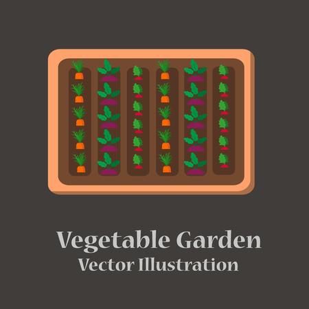 Vegetable garden flat design