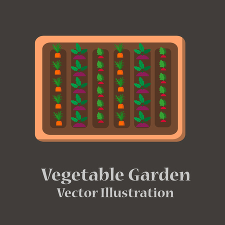 Vegetable garden flat design