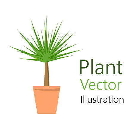 Flower pot with plant. It is used for design as an element for the interior. Vector illustration