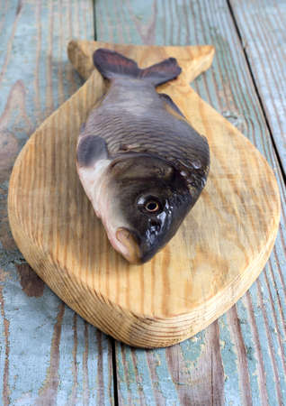 mirror carp: freshwater fish carp on a wooden board living