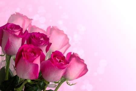 borde de flores: ramo de rosas de color rosa sobre fondo blanco rosa