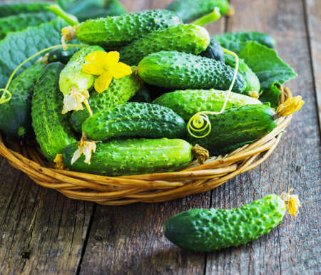 wooden basket: Harvest cucumbers in a basket on the wooden background retro