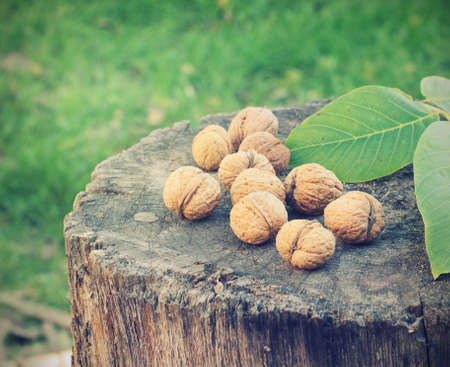 nutritiously: Walnuts on a tree stump in the street toning Stock Photo
