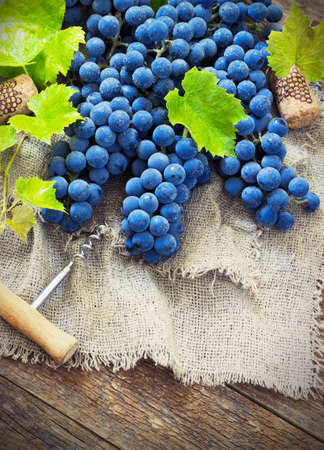 des vins: Wine and grapes in vintage setting with corks on wooden table toning