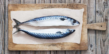 Two raw fresh mackerel fishes on a paper  old wooden table