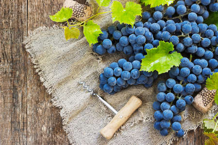des vins: Wine and grapes in vintage setting with corks on wooden table Stock Photo