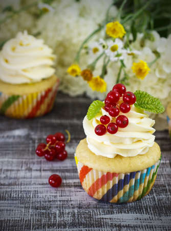 blueberry muffin: Delicious cupcakes with berries Stock Photo