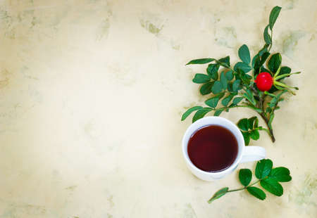 teaparty: Tea from a dogrose in a mug on a light background with fruits. Stock Photo