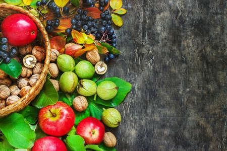 rowanberry: Assortment organic fruits berries apple grape damascene walnut rowanberry dark wooden country background health care natural concept top view