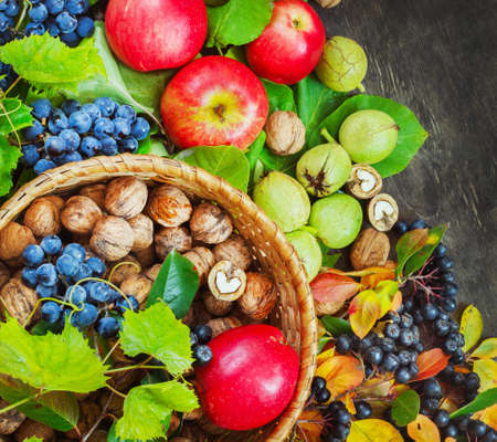 Assortment organic fruits berries apple grape damascene walnut rowanberry dark wooden country background health care natural concept top view. Stock Photo
