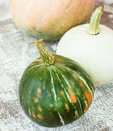 Autumn composition. Pumpkins on white background. Autumn, fall, halloween concept
