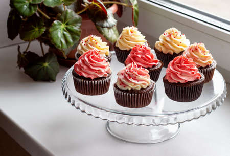 chocolate muffins with a hat of pink and white cream. Reklamní fotografie