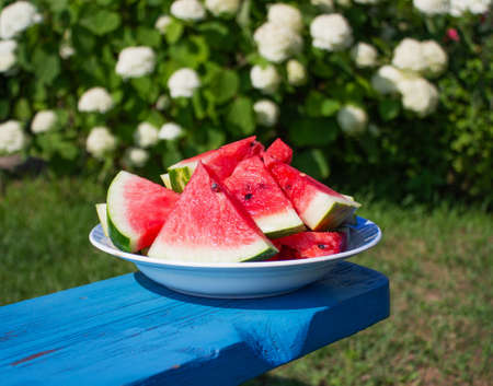 slices of ripe watermelon on a plate in the garden