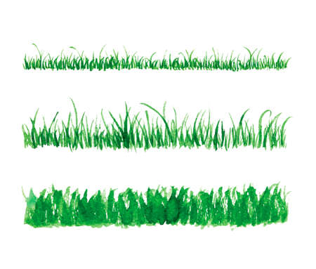 Hand drawn watercolor grass set isolated on white background. Sketch green-fodder. Grass in the sun. Green grass pattern. Abstract herb. Summer juicy thick grass collection. Spring fresh grass kit.