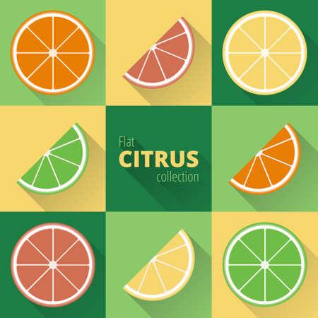 agrumi geometrica: limone, lime, pompelmo, arancia. le icone piane di agrumi con una lunga ombra. frutta colorata in stile piatta Vettoriali
