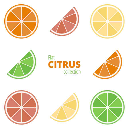 fruited: Flat icons of citrus on a white background. Geometric citrus: lemon, lime, grapefruit, orange. Colorful fruit in a flat style Illustration