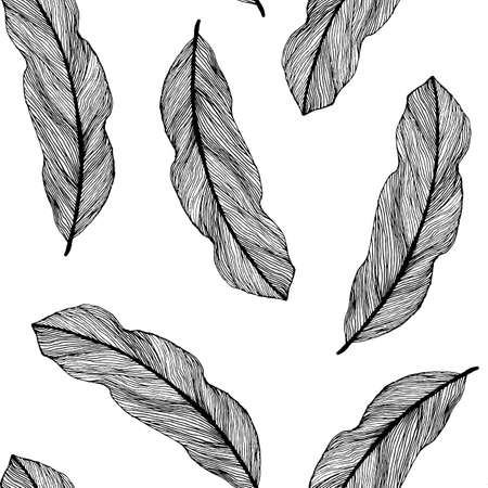 Vector graphic seamless pattern from silhouette leaves houseplant hand-drawn in a linear style. Seamless texture of sketch feathers isolated on white background. For wrapping paper, fabric, textile.
