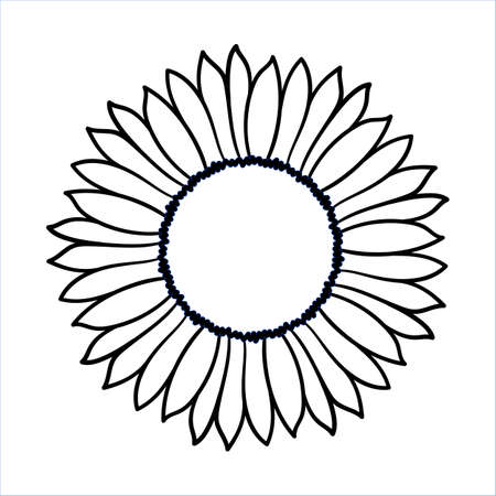 Vector doodle sunflower illustration. Simple hand drawn icon of flower with yellow petals isolated on white background. Line cartoon style.  Vettoriali