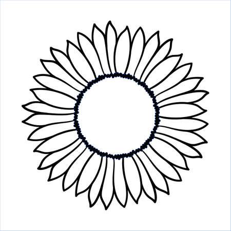 Esbozo De Girasol, Dibujo A Mano, Ilustración Vectorial Sobre Fondo ...