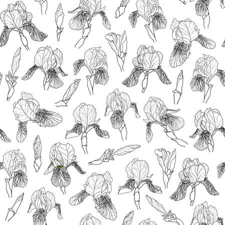 Graphic vector hand-drawn ink seamless pattern of iris flowers in a linear style. Vintage texture drawn on paper and traced buds of tulips from different angles for textile, fabric, invitation. Çizim