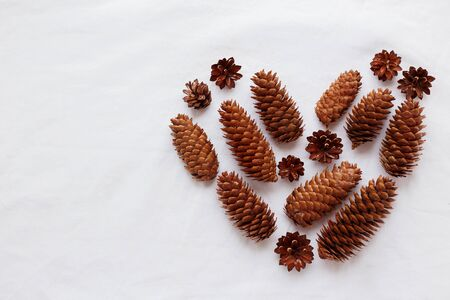 fir cones: Heart of pine cones and fir cones on white background. Place for your text.