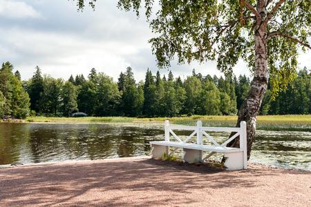 vyborg: Garden bench near a burch tree. Mon Repos park in Vyborg. Russia.