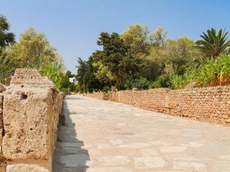 civilization: Carthago (Carthage), ruins of capital city of the ancient Carthaginian civilization. Ancient road. Tunis, Tunisia. Editorial