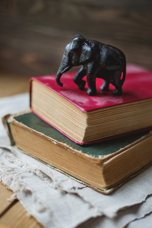 homespun: Two old books and statue of elephant on homespun napkin. Interesting reading, vintage background.