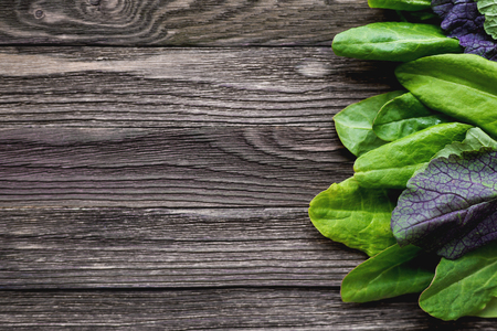 edible leaves: Fresh leaves of sorrel and salad on wooden background. Rustic table with green and violet edible leaves. Place for text. Stock Photo