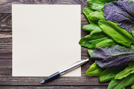 edible leaves: Fresh leaves of sorrel on wooden background. Rustic table with green and violet edible leaves. Place for text.