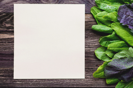 edible leaves: Fresh leaves of sorrel on wooden background. Rustic table with green and violet edible leaves. Place for text. Recipe book. Stock Photo