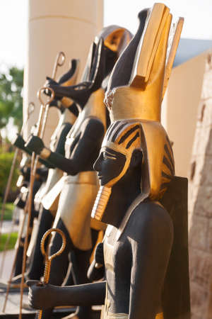 gods: Statues of egyptian gods. Egypt.