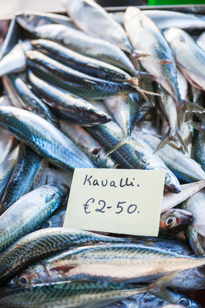 Box full of freshly caught mackerel (in the Maltese language) fish. Early winter morning on Marsaxlokk market, Malta.