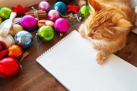 Cute ginger cat lying on clear paper page among Christmas and New Year decorations - bright colorful balls. Notepad paper for to-do-list or New Year promises.