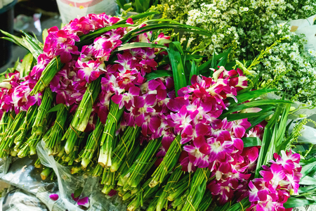 Bunches of orchids in a flower shop. Bangkok, Thailand.