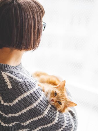 Cute ginger cat dozing on woman arms. Woman in grey knitted sweater stroking her fluffy pet. Cozy home. Stockfoto
