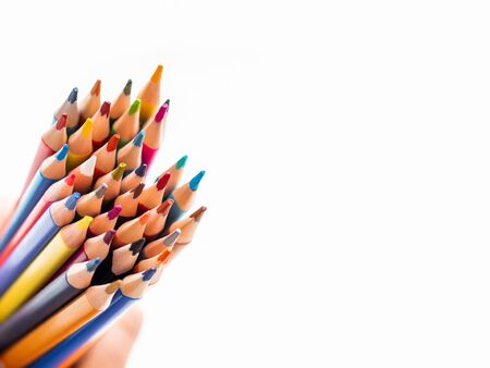Hand with bunch of colorful pencils on white background. School supplies on white background. Kids stationery. Back to school copy space backdrop. Stockfoto