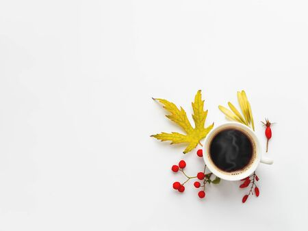 Cup of hot coffe with autumn leaves and berries on white background. Warm beverage in white mug with copy space.