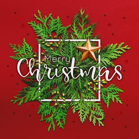 Christmas background with thuja branches and words MERRY CHRISTMAS in white square frame. Trendy Xmas greeting  with star decorations on red backdrop.