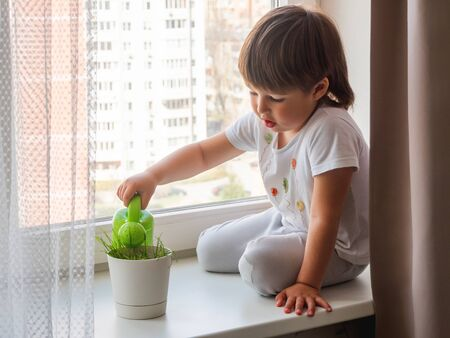 Toddler boy sits on windowsill and waters green grass in flower pot. Little child with green watering can. Kid's first first duties at home.