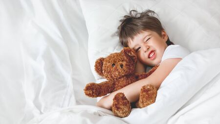 Toddler doesn't want to wake up in bed with cute teddy bear. Little boy under white blanket with fluffy toy. Plush guard watches out child's sleep. Background with copy space. Banque d'images