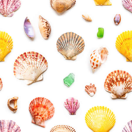 Seamless photo pattern with different sea shells. Flat lay with colorful mollusc shells, corals and wave-worn pieces of glass and stones. Top view on finds from ocean beach.