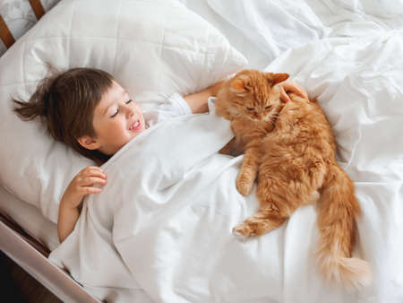 Toddler lies in bed with cute ginger cat. Little boy under white blanket with fluffy pet. Child's friendship with domestic cat. Cozy home at morning. Reklamní fotografie