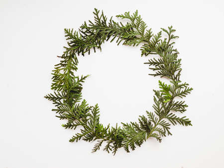 Circle wreath of twigs of thuja. Symbol of Christmas celebration and winter holiday spirit. New Year white background. Festive backdrop with copy space. Stock Photo